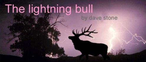 lightning bull